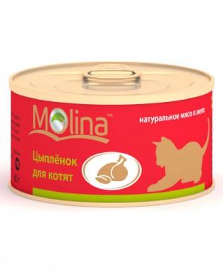 """Консервы для котят Molina """"Цыпленок для котят"""" (80гр)"""