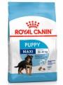 Сухой корм Royal Canin Maxi Junior для щенков крупных прод с 2 до 15/18 месяцев