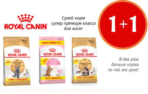Акция! Купи Royal Canin 400гр+400гр в подарок!