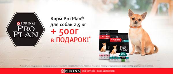 Pro Plan Акция 2.5 кг+500г в подарок!