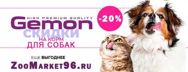 Cкидка 20% на корм для собак Gemon!