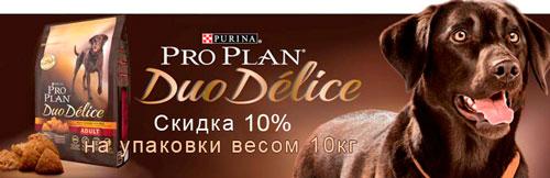 Дуоделис скидка 10%
