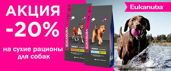 Скидка 20% на корма для собак Eukanuba