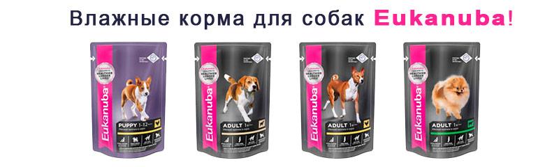 Влажные корма для собак Eukanuba
