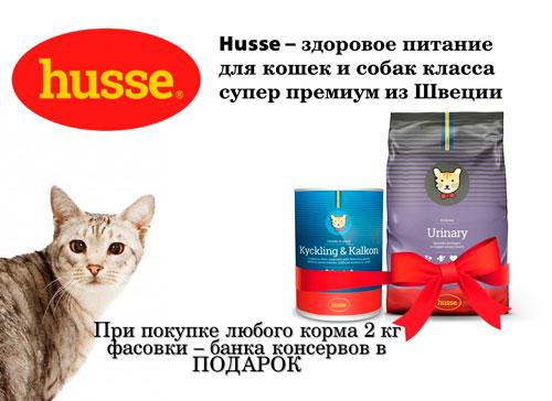 купи корм Хуссе 2кг, консерва в подарок!