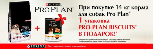 Купи ProPlan+лакомство в подарок!