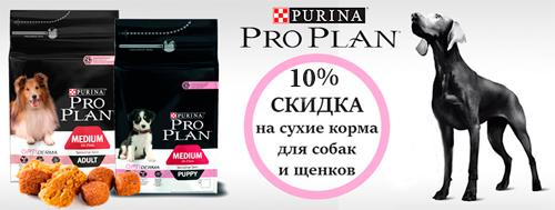 Акция на сухой корм для собак Proplan скидка 10%