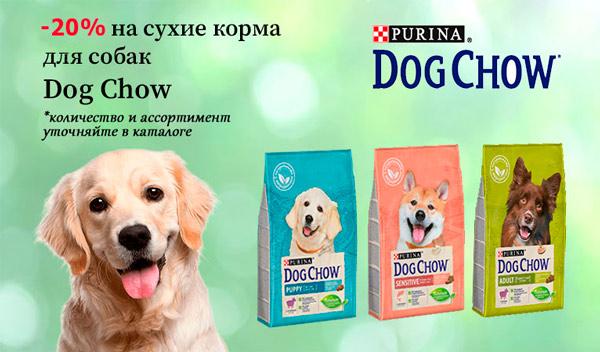 Скидка 20% на корма для собак Dog Chow!