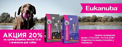 Скидка 20% на корма для собак Eukanuba с ягненком!
