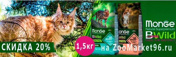 Скидка 20% на корма Monge Cat BWild GRAIN FREE