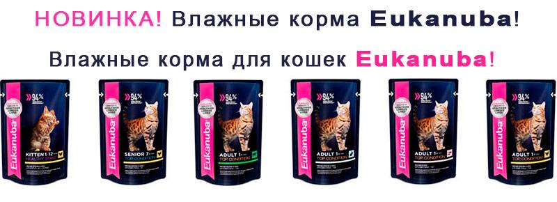 Влажные корма для кошек Eukanuba